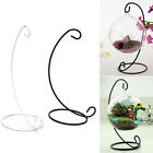"""1X 23cm 9"""" Iron Plant Stand Holder for Clear Glass Hanging Vase Home Decor  AU"""