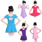 toddlers dance clothes - Children Toddlers Flower Girls Ballet Dance Dress Leotard Dancewear Tutu Clothes