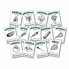 13 Varieties Heirloom USDA Non-GMO Organic Vegetable Garden Seeds Kit