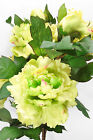 GIANT Green Pink cream Peony spray 83cm long 2 flowers + 1 bud artificial silk