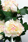 GIANT  Cream Fuchsia Peony spray 83cm long 2 flowers + 1 bud artificial silk