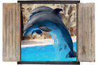 Wall Sticker Window 3D Decal Vinyl Animal Animals Dolphins Room room decor home