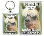 """""""I Dont Know Why Everyone..."""" Meme Alpaca Funny Keyring & Fridge Magnet Gifts"""
