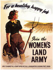 JOIN THE WOMEN'S LAND ARMY VINTAGE STYLE NOSTALGIC METAL PLAQUE TIN SIGN 423