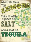 WHEN LIFE GIVES YOU LEMONS TAKE IT WITH SALT AND TEQUILA METAL PLAQUE SIGN 1234