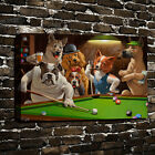 HD Print Dogs Playing Pool Billiards Oil Painting on Canvas Home Decor Unframed