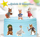 Peter Rabbit & Friends XL edible cake toppers baby shower first birthday boy x6