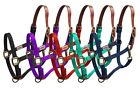 Showman Full Horse Size Nylon Leather Crown Breakaway Turnout Stable Halter