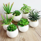 cheap planters and pots