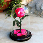 Preserved Real Flowers Natural Fresh Rose Glass Gifts Mother 's Valentine' s Day