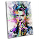 David Bowie Abstract Canvas Print Framed Iconic Music Wall Art Picture