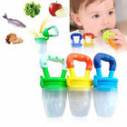 Cute Baby Food Supplement Fruit Vegetable Baby Feeder Baby Bite Pacifier Toys