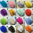 Внешний вид - 50pcs Beautiful  natural ostrich feathers 6-24 inches / 15-60 cm (16 colors)