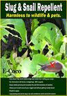 SLUG & SNAIL REPELLENT, ORGANIC, NATURAL ALTERNATIVE TO PELLETS & TRAPS