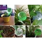 3 House/Garden Water Houseplant Plant Pot Bulb Automatic Self Watering Device US