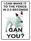 I CAN MAKE IT TO THE FENCE IN 2.5 SECS CAN YOU STAFFY DOG METAL PLAQUE SIGN 445