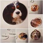 Pet ID tags with your pets picture on one side excellent quality 2 sizes
