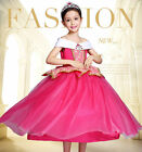 Kids Girls Princess Dress Halloween Tulle Dress Party Cosplay Chiristmas Costume