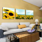 Oil Painting Modern Art Wall Scenery Flower Picture Print On Canvas No Frame New