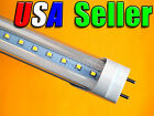"Lot of 12 - 110V AC T8 48"" 18W Pure White LED Fluorescent Replacement Tube Light"