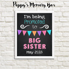 Pregnancy Reveal New Baby Big Sister Announcement Photo Shoot Poster Print
