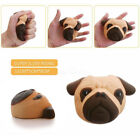 Внешний вид - Squishy Dog Face Bread Super Soft Slow Rising Gift Phone Strap Cream Scented Toy