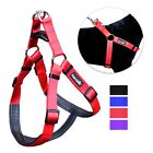 Внешний вид - No Pull Padded Comfort Nylon Dog Walking Harness for Small Medium and Large Dogs