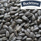 Bucktons Black Sunflower Bird Seed - 500...