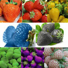 100PCS Sweet New Strawberry Antioxidant Seeds Delicious Vegetables Berry Seed