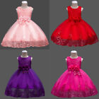 Flower Girl Dress Lace Sequin Princess Tutu Gown for Kids Party Wedding Pageant