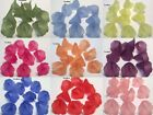10 Frostwd Acrylic Lily-Trumpet Flower Beads-Lightweight-Jewelry Making-18x19mm