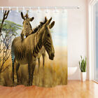 Animal Theme Zebras In Wild Bathroom Polyester Fabric Shower Curtain 71X71 Inch