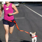 Dog Leash Lead for Running Jogging Walking Hands Free Hiking Harness 4 colors