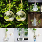Hanging Glass Flower Planter Vase Container Home Garden Ball Decor Fish Tank