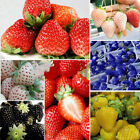 100x Strawberry Seeds Nutritious Delicious Rare Colors Fruit Vegetables Seeds IK