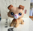 18 Styles Lovely Littlest Pet Shop Collection LPS Hair Standing Cat Tiger Toys