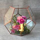 Geometric Crystal Shape Terrariums Tabletop Box Planter Vase Ball Type Hanabusa