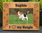 Personalized Engraved // Beagle // Picture Frame