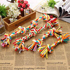 Pet Puppy Dog Cotton Knot Braided Bone Colorful Teeth Clean Toys Rope Funny