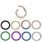 """2x 20G 5/16"""" Anodized Seamless Hinged Segment Earring Lip Nose Ring Septum Ring image"""