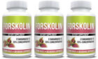 Forskolin Extract 20% Standardized Health & Weight Loss Supplement Pure Fat Burn