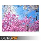 HAPPY SPRING (AD987) NATURE POSTER - Photo Picture Poster Print Art A0 to A4