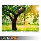 ONE SUNNY SPRING DAY_TELASM (AD993) NATURE POSTER - Poster Print Art A0 A1 A2 A3