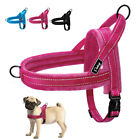 Reflective No Pull Dog Harness with Quick Control Handle Soft Fleece Padded S L
