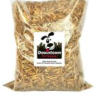 Downtown Pet Supply Dried Mealworms 100% Natural Treats For Wild Birds, Chickens