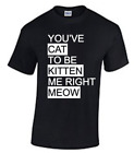 You've Cat to be Kitten me right Meow T-shirt for Cat Lovers