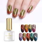BORN PRETTY 6ml Nagel Gellack Thermal Magnetisch Soak Off Nail Art UV Gel Polish