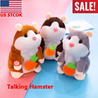Kyпить US Cute Cheeky Hamster Talking Mouse Pet Christmas Toys Speak Sound Record Gifts на еВаy.соm