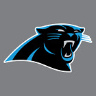 Carolina Panthers Vinyl Sticker / Decal * NFL * NFC * South * Football * NC *