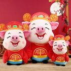 2019 NEW YEAR Chinese Zodiac Mascot Wealth Plush Pig Doll Toys Kids Baby Toys